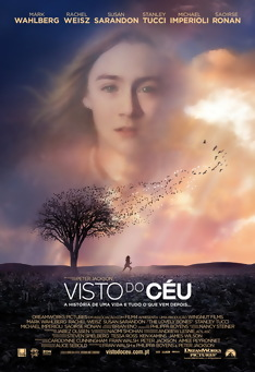 Poster de «Visto do Céu»